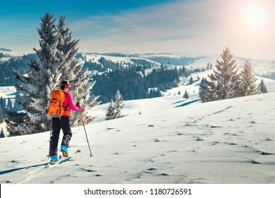 Ski touring in high alpine landscape with snowy trees. Adventure, winter activities, skitouring in spectacular mountains, Transylvania,Carpathians,  Romania, Europe