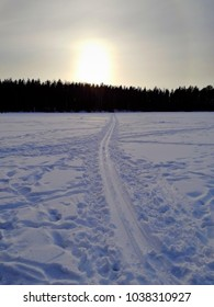 Ski tracks during sundown in Finland. Cold temperature. Freezing climate.