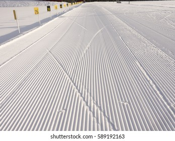 Ski tracks at an empty biathlon arena