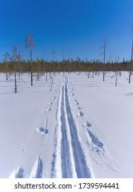 Pistas de esquí sobre la nieve de Laponia pura bajo cielos azules