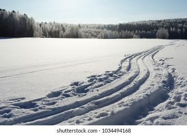 Ski tracks on a sunny day.