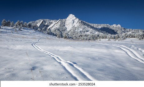 Ski Tracks in the Snow Below the Flatirons in Boulder, Colorado's Chautauqua Park