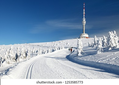 ski trail  or crosscountry skiing way on jesenik mountain and television transmitter praded - czech republic