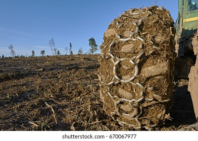 Skidder tire with chain on a clear cut