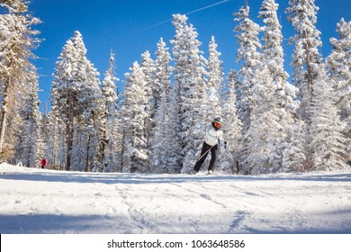 Skier in mountains, prepared piste and sunny day.