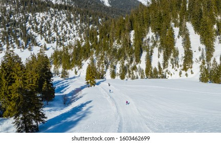 Skier on Slope of Mountain Wank Germany