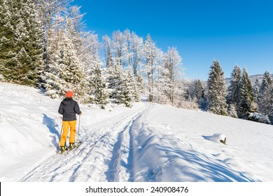Skier on track in winter landscape of Beskid Sadecki Mountains, Poland