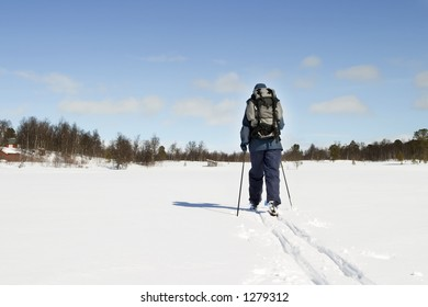A skier on a wintery snow filled landscape.