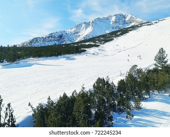 Skiers in Bansko, Bulgaria. Todorka ski slope, pine trees and mountains view