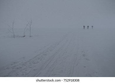 skiers go through the blizzard
