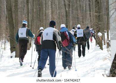 Skiers on walk in winter wood