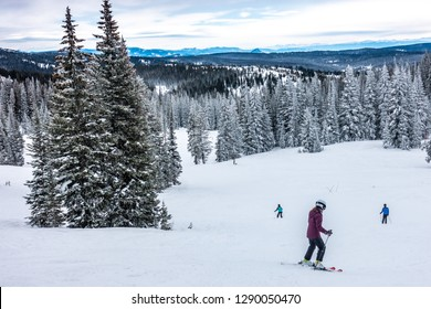 Skiers (people) skiing the snowy winter slopes at the Steamboat Springs Ski Resort, on Mount Werner, lined by Pine trees and Aspen trees, in the Rocky Mountains of Colorado