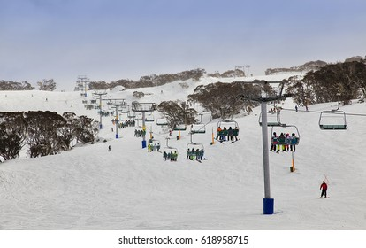 Skiing resort of Australia - Snowy mountains. Perisher valley cable-way transports skiers to mountain tops between snow fields and snow-gum trees.