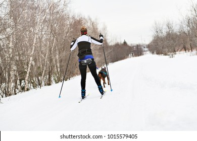 skijoring woman in forest