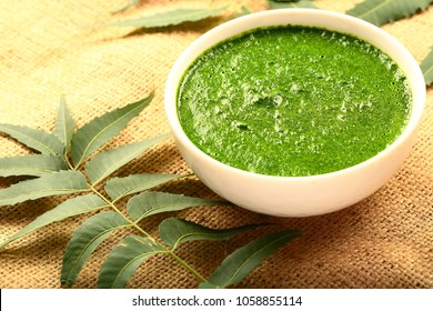 Skin care concept- herbal cream with neem tree leaves and seeds.