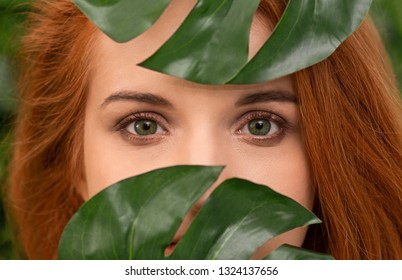 Skin care, pure beauty, cosmetics concept .Young green-eyed redhead girl looking through monstera leaves, closeup