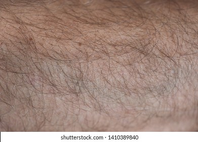 skin on arm with hairs texture