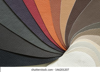 skin samples in a variety of colors