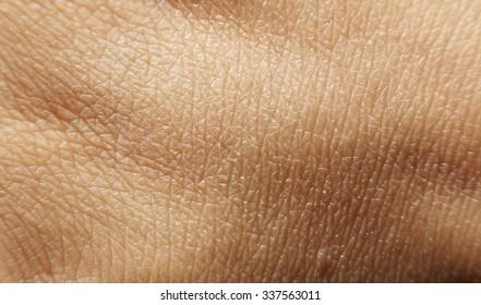 skin texture human