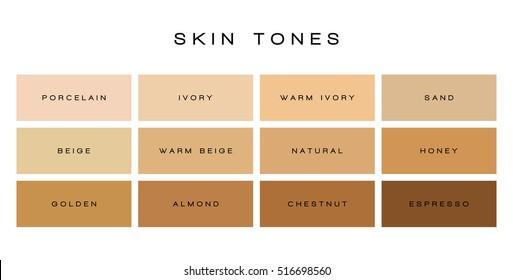Skin tones color palette vector skin stock vector 703672501