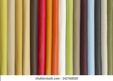 skin/leather color sampler