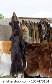 Skins (trapping) of bears, wild boars, foxes, wolves and other fur-bearing mammal at Russian fair. - Field of activity of opponents of use of fur - PETA (People for the Ethical Treatment of Animals)