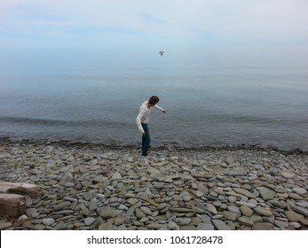 Skipping Stones In Oakville
