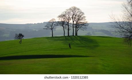 Skipton / Great Britian - February 16 2019:  green park on a sunny day - Skipton