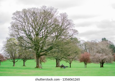 Skipton / United Kingdom -  31 March 2019: man sitting on the bench in the park in Skipton