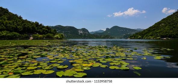 Skoder Lake in Montenegro
