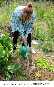 SKOFIJE, SLOVENIA - MAY 30, 2015: Unknown woman gardener prepares a new garden bed from a meadow, first digging soil with a  hoe. Learning to make her first vegetable garden.