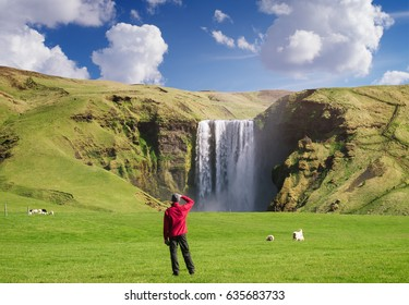 Skogafoss waterfall in Iceland. Guy in red jacket looks at the huge flow of water. Famous tourist attraction. Sunny summer day