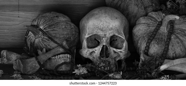 Skull with bone and thai pumpkins whis has old beads put on old wooden table which has dim light adjustment size and color black and white for background / Still Life Image and space for texts