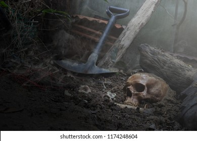 Skull and bones digged from pit in the scary graveyard ,The smoke / Still life and selective focus