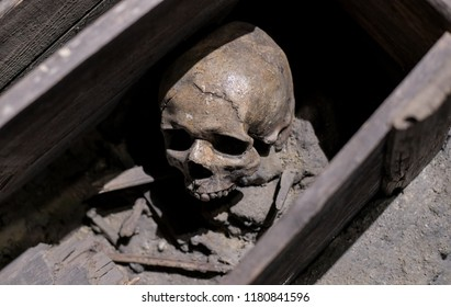 Skull and bones in ruined wooden coffin