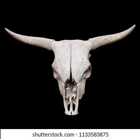 Skull of bull isolated on black background with clipping path. Brutal Symbol of Wild West. Stock photo.