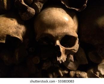 Skull in catacomb