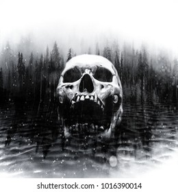 Skull in center of a dark foggy lake