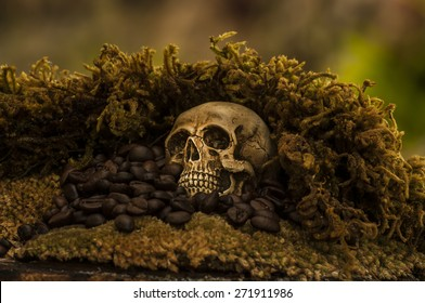 Skull and coffee beans