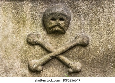 Carved Bone Images Stock Photos Vectors Shutterstock