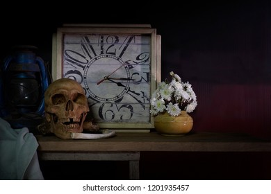 Skull and death and time is true story of nature human / Still Life Image And select focus