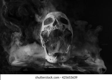 Skull in dry ice
