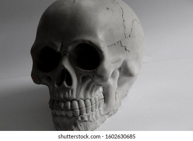 A skull encased in darkness