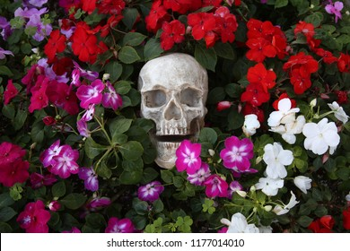 Skull with flowers. Halloween Human Skull in Beautiful Flowers. Spooky Halloween images. Day of the Dead.