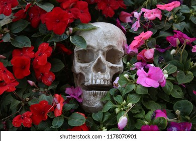 Skull with flowers. Halloween Human Skull in Beautiful Flowers. Spooky Halloween images. Day of the Dead.  Cycle of Life. Flowers of life.