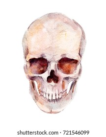 Skull, Halloween watercolor illustration, isolated objects on white background.