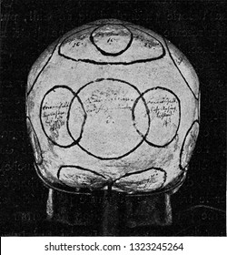 Skull with indication of Gall organs seen from side and back, vintage photo. From the Universe and Humanity, 1910.