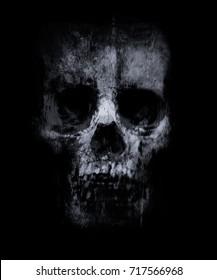 Skull isolated on black background. Horror background for halloween concept. Design for t-shirt print with skull.