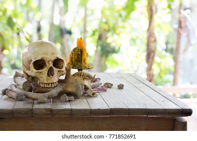 Skull on pile bone with candle on wooden table outside green garden / Blurred and select focus, Still Life image