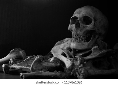 Skull on pile of bones put on the wooden plank which has dim light on the dark wall background / Selective focus, and adjustment color black and white, Still Life Image and space for texts